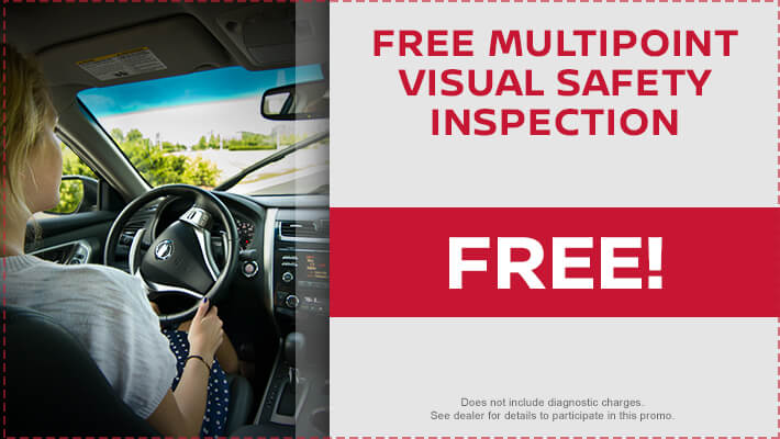 Free Multipoint Visual Safety Inspection