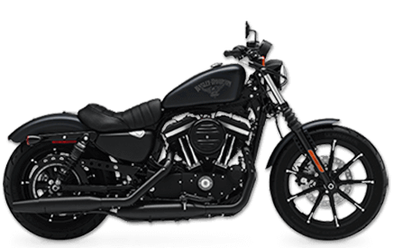 Harley Davidson Staten Island Iron 883
