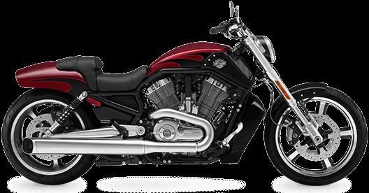 Harley Davidson Staten Island V-Rod Muscle