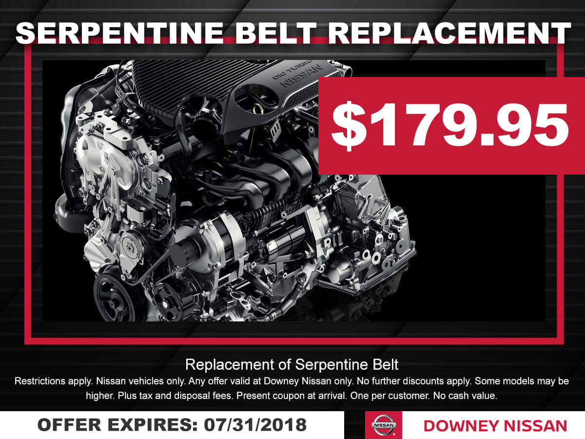Nissan Serpentine Belt Special