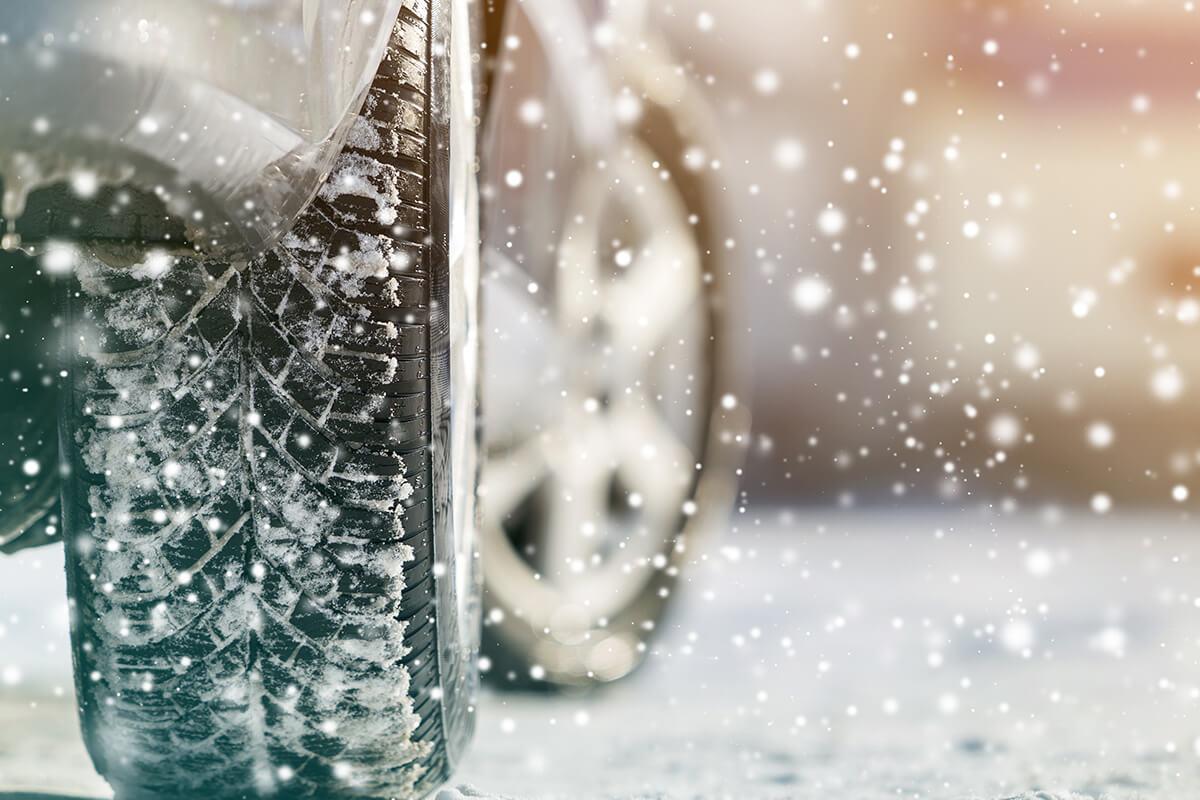 January Winter Savings