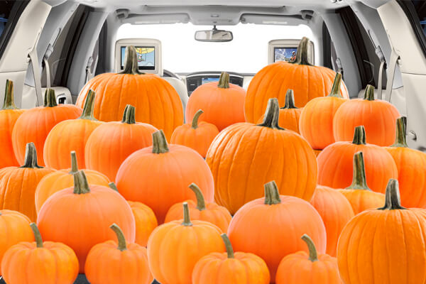 Mossy Nissan National City >> How Many Pumpkins Can We Fit in a 2017 Nissan Pathfinder ...