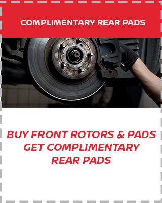 Complimentary Rear Pads