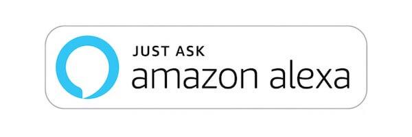 2019 Nissan Rogue Amazon Alexa