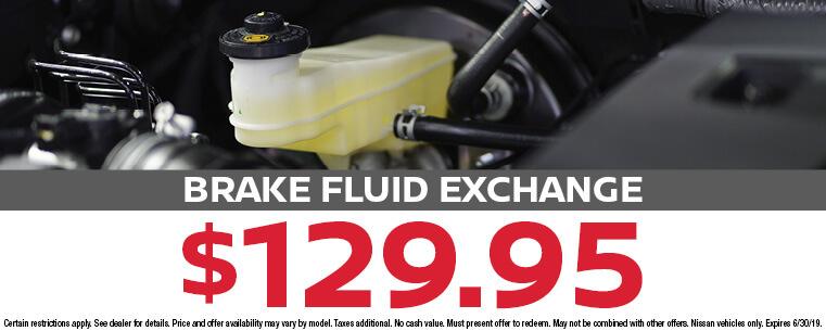 Brake Fluid Exchange