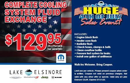 COMPLETE COOLING SYSTEM FLUID EXCHANGE