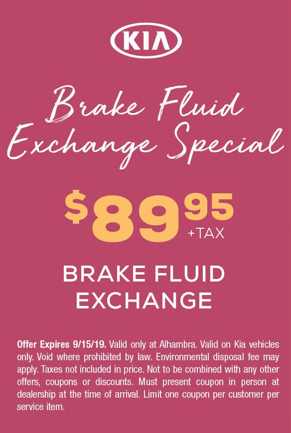 Brake Fluid Exchange Special