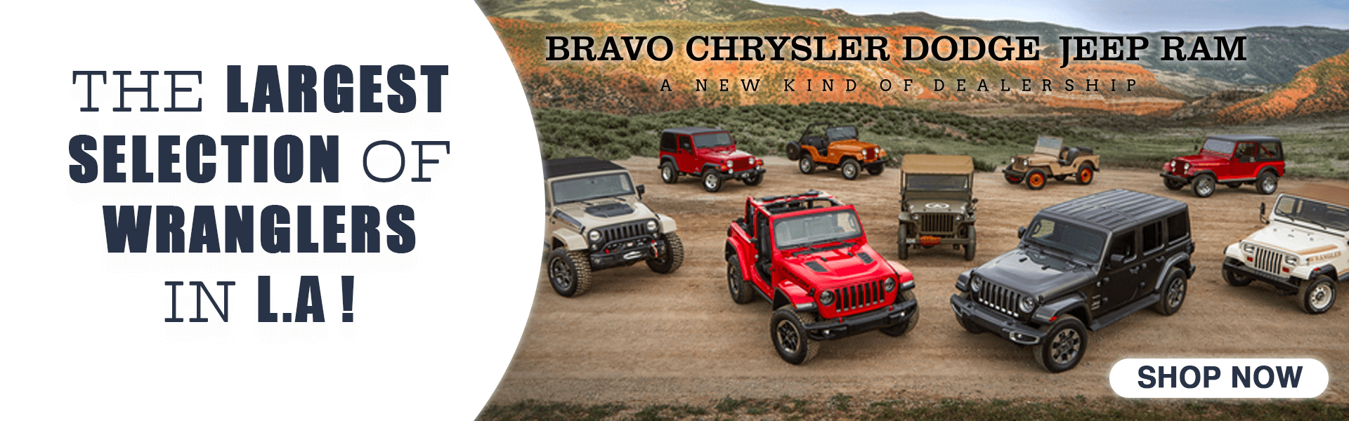 Largest Selection of Wranglers