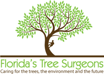 Florida Tree Surgeons