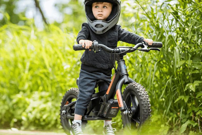 Harley Davidson IRONe™