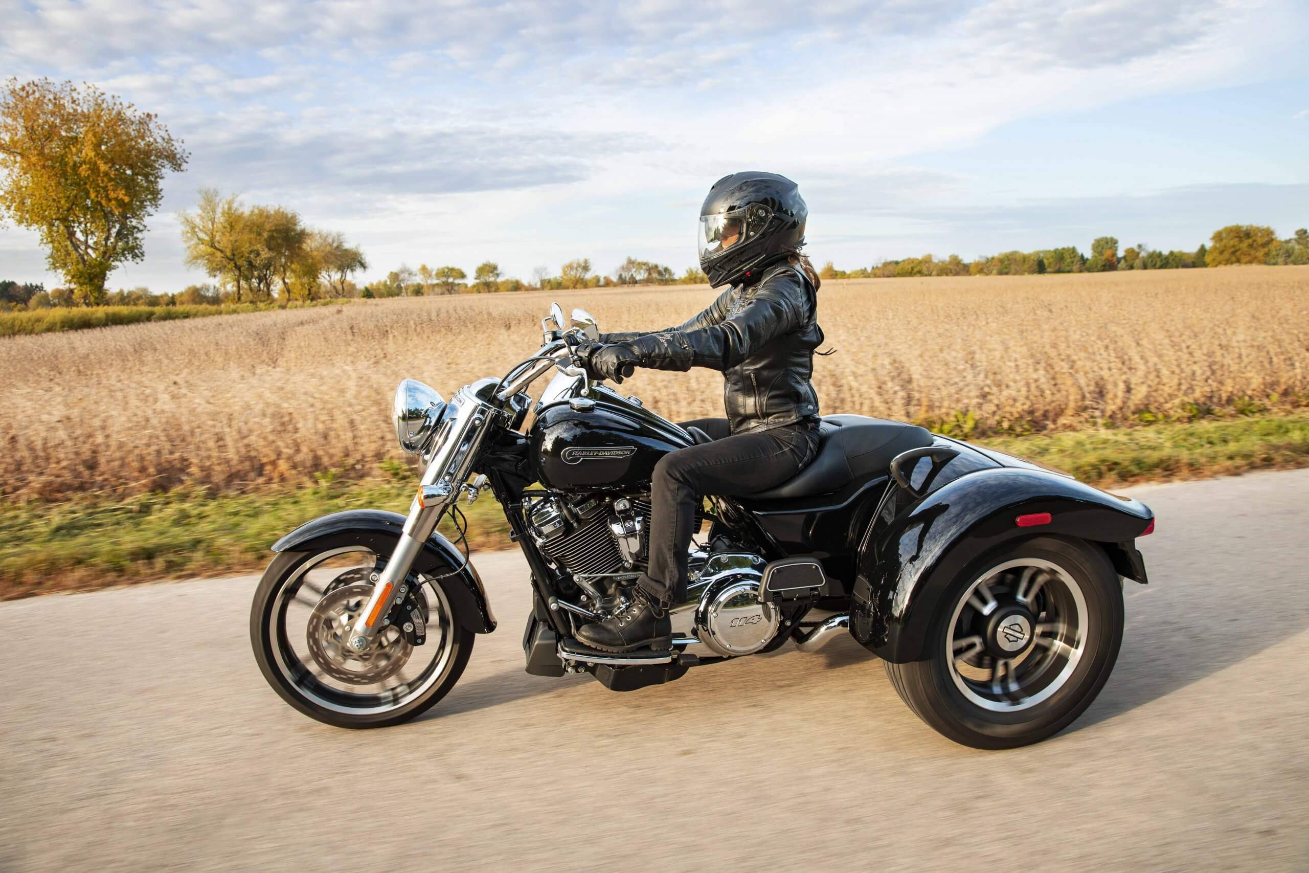 Milwaukee-Eight® 114 V-Twin engine and Enforcer wheels