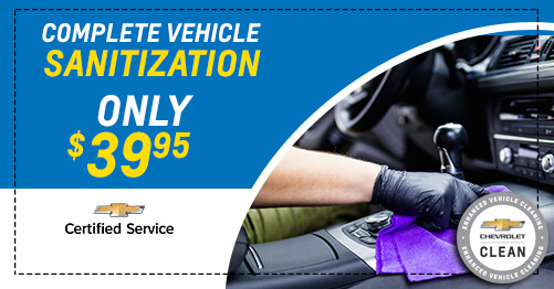 Complete Vehicle Sanitization