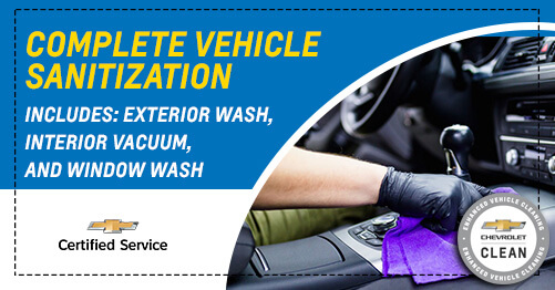 Full Vehicle Sanitization
