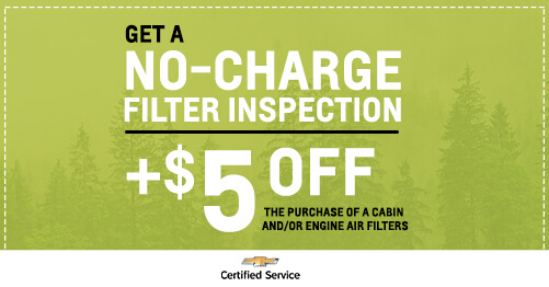 FREE Filter Inspection