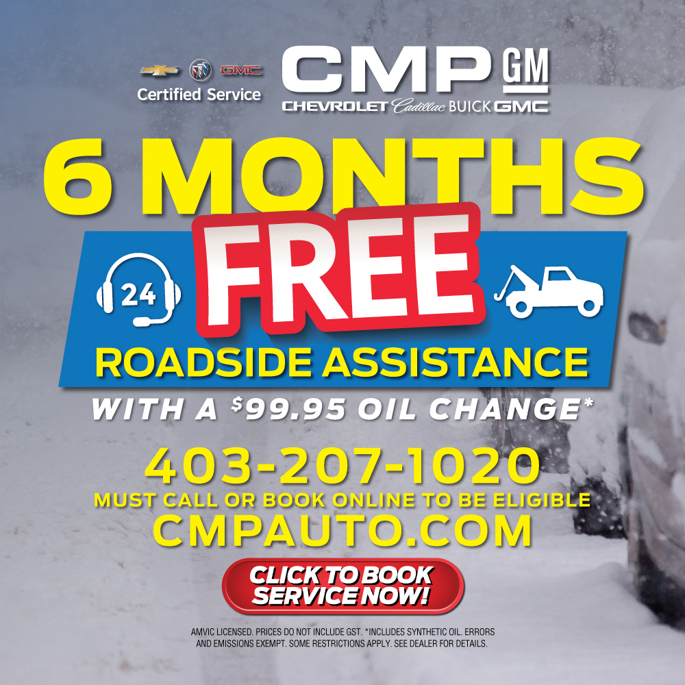 6 Months Free