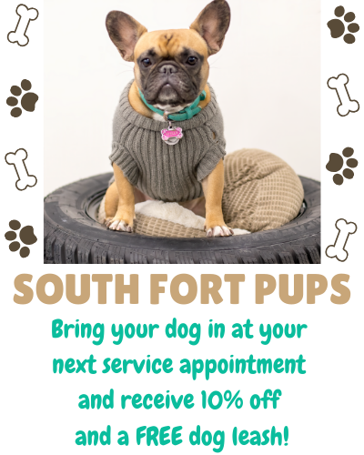 10% Off Service and FREE Dog Leash