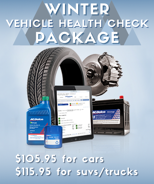 WINTER VEHICLE HEALTH CHECK PACKAGE