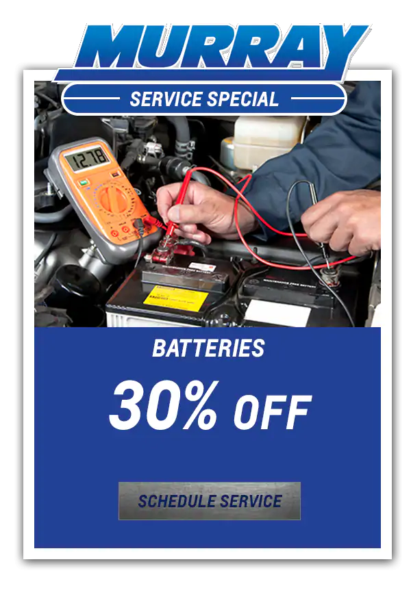 Batteries 30% off