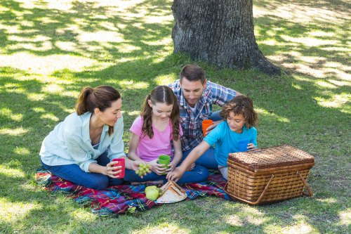 family having a picnic in the park under a tree