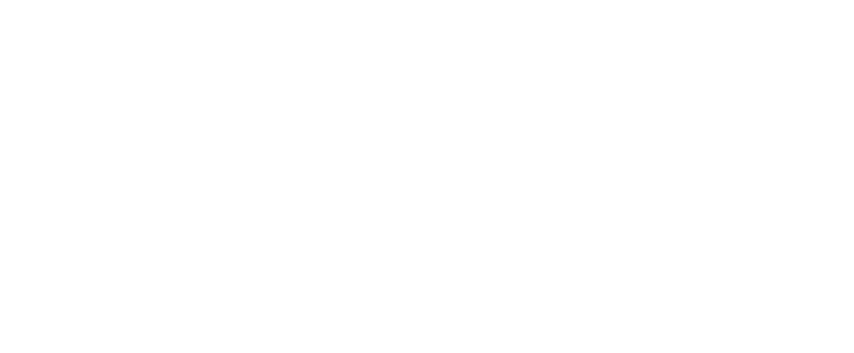 Wolfe Group