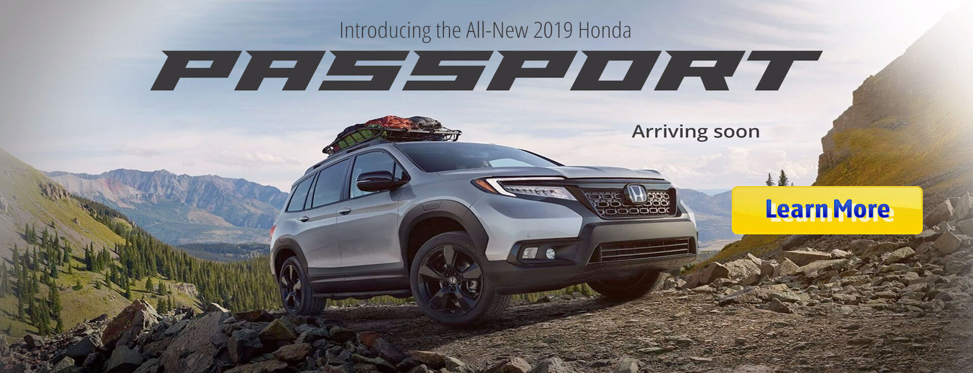 Honda Passport Evergreen