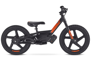 ELECTRIC BIKE FOR KIDS in Hilbert
