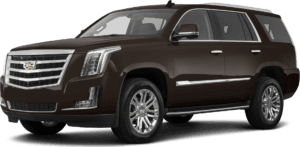 ESCALADE in Sherwood Park